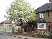 Brand Homes Ltd, Care Home, Staines Upon Thames, TW18 1ND